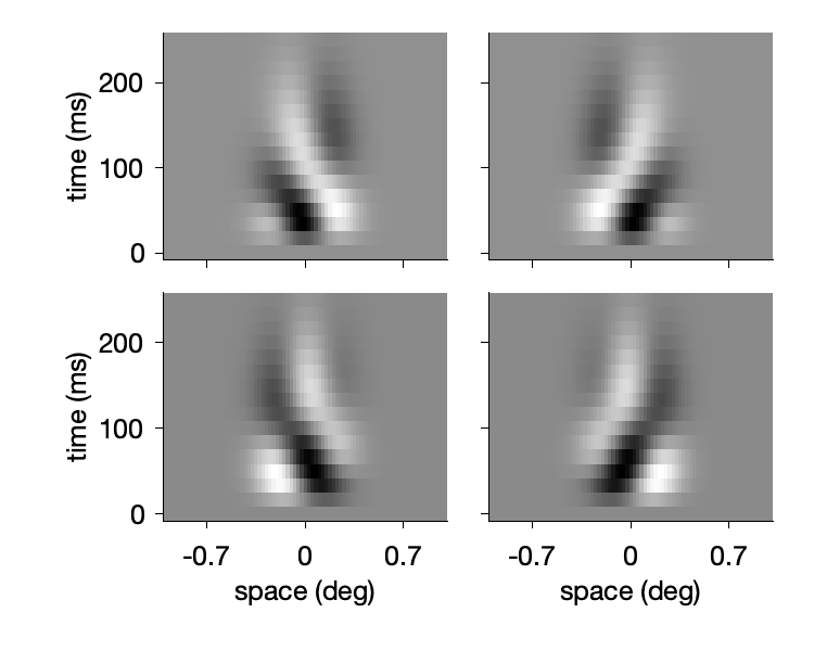 Phase-invariant filters for left and right